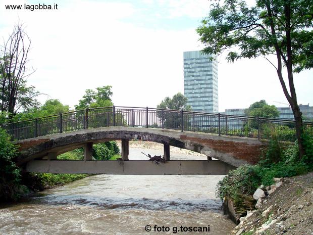 Il ponte del Lupo in una fotografia delgiugno 2008.